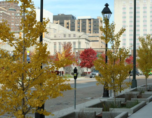 Capital Trees 14th Street Initiative Honored by Scenic Virginia